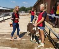 Agri-Personeel opleiding (2)
